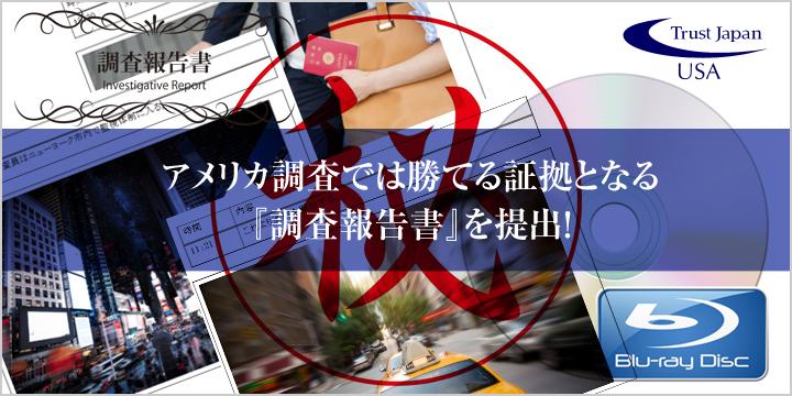 写真や映像も添付された報告書